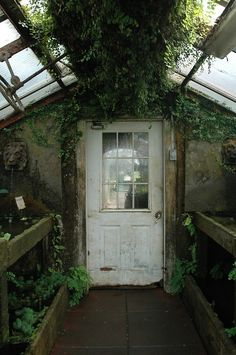 greenhouse how-does-your-garden-grow