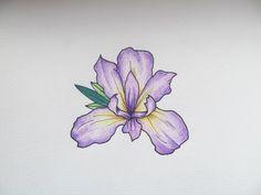 iris tattoo - Google Search More