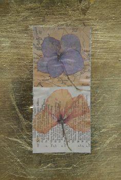 Pressed flowers Leaf Cards, General Crafts, How To Preserve Flowers, Dried Flowers, Book Lovers, Bookmarks, Fun Crafts, How To Find Out, Flower Preservation