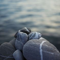I love rocks. I always notice them, Pick them up and I normally come home with one in my pocket in the summer time. Rock And Pebbles, River Pebbles, Pebble Stone, Love Rocks, Sticks And Stones, Beach Stones, Stone Work, Wire Art, Rocks And Minerals