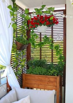 Small Balcony Design, Small Balcony Decor, Balcony Plants, Narrow Balcony, Balcony Gardening, Apartment Balcony Decorating, Apartment Balconies, Small Pergola, Pergola Patio