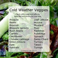 Cold weather veggies you can grow in the fall and winter - empressofdirt.net 1. Fall Vegetable Growing 101.  Step-by-step directions for getting your fall (or winter) veggie garden started.  How To Grow Vegetables In The Winter Showing how I grow a variety of veggies in the snow.   Here's a list of some of the veggies that do well in a cold climate: