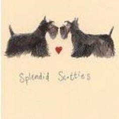 Alex Clark card splendid scotties