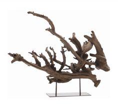 Dragon Tree Root Sculpture