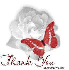 beautiful thank you glitter graphics | Thank you graphics comments