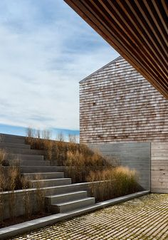 grasses and shingles + steps and terraced garden