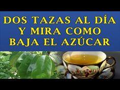 Toma Dos Tazas De Este Te Al Dia y Mira Como Baja El Azucar En La Sangre - YouTube