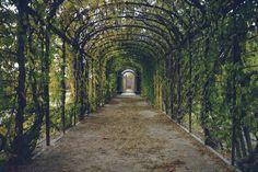 Versteckte Paradiese - 10 grüne Oasen in Hamburg