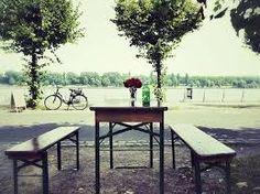 Bonn beer garden   The Music of Temptation