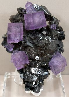 Flourite on Sphalerite:  from the 2013 Tucson Gem & Mineral Show (photo by Renate Surh)