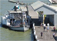 oscar w cruises goolwa - Google Search
