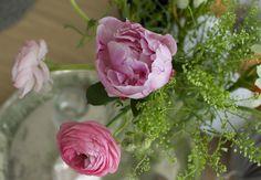 Peonies pink // spring at wwe.syyskuunkuudes.com
