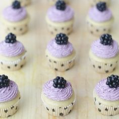 Mini Vegan Vanilla Cupcakes with Blackberry Buttercream Frosting