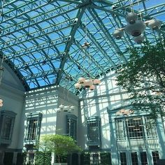 "Harold Washington Library -   400 S. State Street, The Loop --   ""The ninth floor has a winter garden, which is basically a big, beautiful atrium with free Wi-Fi"