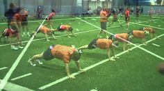 Auburn Softball Monday Workout 10 4 2010.wmv