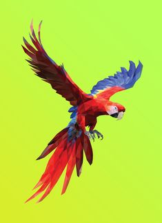 Poly Macaw Art Print by Breno Bitencourt - X-Small Low Poly, Motif Jungle, Paint Chip Art, Polygon Art, Age Of Ultron, Character Design Animation, Bird Pictures, Cute Wallpaper Backgrounds, Dragons