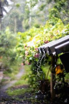love rain sounds on the old tin roof Walking In The Rain, Singing In The Rain, Foto Macro, Smell Of Rain, I Love Rain, Rain Days, Rain Photography, White Photography, Rainy Day Photography