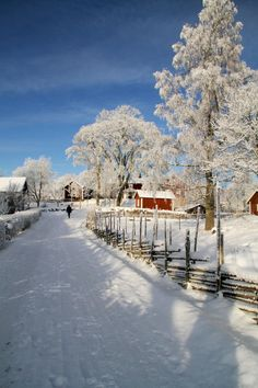 Winter in Småland, Sweden Sweden Cities, Kingdom Of Sweden, Beautiful Places, Beautiful Pictures, Visit Denmark, Sweden Travel, Winter Magic, Winter Scenery, Winter Pictures