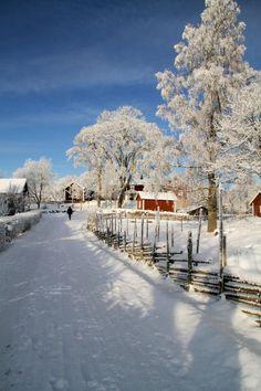 Winter in Småland