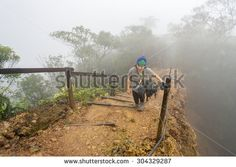 Mount Kinabalu Sabah Malaysia - August 8, 2015:Unidentified climber passing misty trail to the summit of Mount Kinabalu.The trails open up to Laban Rata after two months closure due to earthquake.