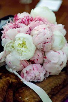 Ramo de peonias blancas con vetas rosas