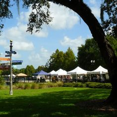 Orlando Farmers Market Fantastic array of produce and goodies... #shopping