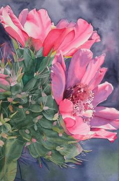 ChollaCactus. Jane Fritz. Watercolor