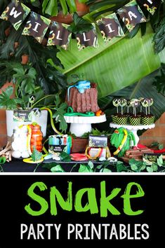 Get these amazing Jungle Snake Party ideas including snake party invitations, snake party banners and snake party decorations and cake ideas! Reptiles, Snake Cakes, Snake Party, Party Favor Tags, Party Invitations, Reptile Party, Party Banners, Colorful Party, Party Signs