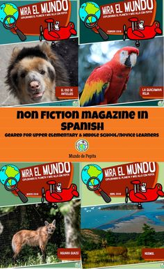 Subscribe to our Non Fiction printable magazine in SPANISH, great for incorporating content based instruction in your upper elementary & middle school classes! Culture activities, activity pages, and more. Includes activities for heritage speakers as well! Mundo de Pepita, Resources for Teaching Spanish to Children