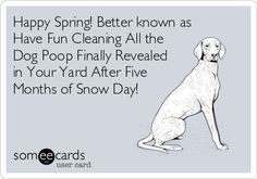 A little spring humor all dog parents can relate to!