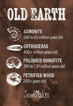 Fossil stones information card by SoulMakes