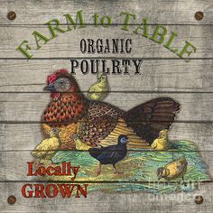 I uploaded new artwork to plout-gallery.artistwebsites.com! - 'Farm To Table Poultry-jp2630' - http://plout-gallery.artistwebsites.com/featured/farm-to-table-poultry-jp2630-jean-plout.html