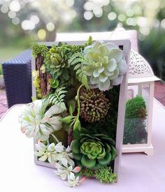 Świąteczne Atelier - Obrazek z sukulentów roz. L Plants, Atelier, Plant, Planets