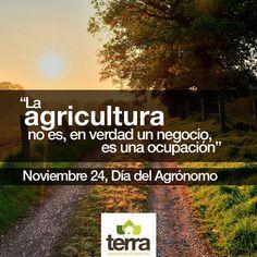 Hoy es el día esas personas que dedican su vida al campo y el agro. ¡En #Terra le deseamos un feliz día a todos los agrónomos! #VivirEnElCampo #ViveLoNatural #Agrónomos  #TerraPyJ #CultivaTuCorazónVerde