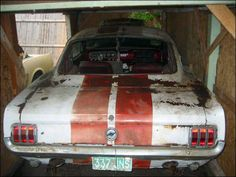 classic cars rotting  | Two Free Classic Mustangs Anyone? - StangTV.com