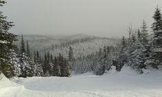 Vue des pistes, Le Valinouet, Falardeau Québec, décembre 2013 2013, Photos, Canada, Snow, Outdoor, Dance Floors, Floor, Outdoors, Photographs