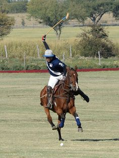 Polo: beautiful horses + people watching + high-end tailgating= photography trifecta.