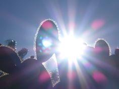 Sunshine Thema: het weer