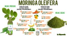 Moringa : a super planta que mantém Fidel Castro vivo Moringa Planta, Health And Nutrition, Health Tips, Home Remedies, Natural Remedies, Miracle Tree, Moringa Oil, Medicinal Herbs, Herbal Medicine