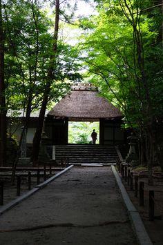 法然院、京都/Honenin, Kyoto, Japan