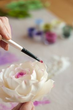 The Petalsweet Blog: Different types of brushes to use for different sugar flower painting techniques