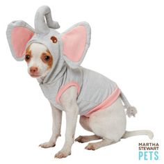 We can't even -- the #MarthaStewartPets Elephant Hoodie - only @petsmartcorp