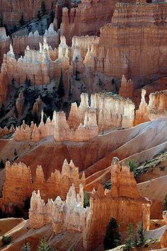 Stunning Nature formations to behold in Bryce Canyon, Utah