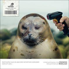 Initiatives océanes un peu partout pendant le printemps : inscrivez vous pour les nettoyages des plages sur ce site : http://www.initiativesoceanes.org/