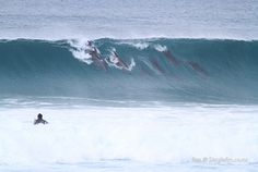 Now that's what we call surfing