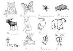 Metsäretki sekä metsäneläintehtäviä ja -leikkejä – Suomi-koulussa Finnish Language, Kindergarten, Moose Art, Homeschool, Workshop, Teaching, Comics, Kids, Animals