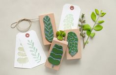 BOTANICAL STAMP SET: ITS GETTING GREEN! Set of three botanical rubber stamps. Hand drawn & inspired by nature they dress up your papers with floral greetings. The stamps from this set are also available solitary: Climbing plant: Fun Craft, Ink Stamps, Ink Pads, Botanical Illustration, Gift Tags, Diy And Crafts, How To Draw Hands, Greeting Cards, Gift Wrapping