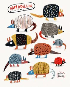 Drawn on Procreate with a bit of collage. Armadillo, Instalation Art, Animal Art Prints, Animal Doodles, Abstract Animals, Funny Illustration, Whimsical Art, Pictures To Paint, Animal Illustrations