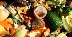 Compost is goed voor je tuin en maak je zelf met een compostvat of -bak. Gooi verteerbaar tuin- en keukenafval op de hoop. Na twee tot negen maanden heb je compost.