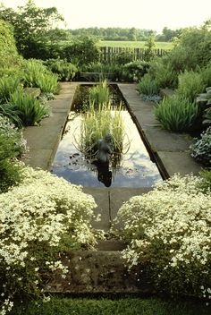 A water feature that can be adapted to a small garden.
